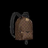 Рюкзак Louis Vuitton Palm Springs pm коричневый