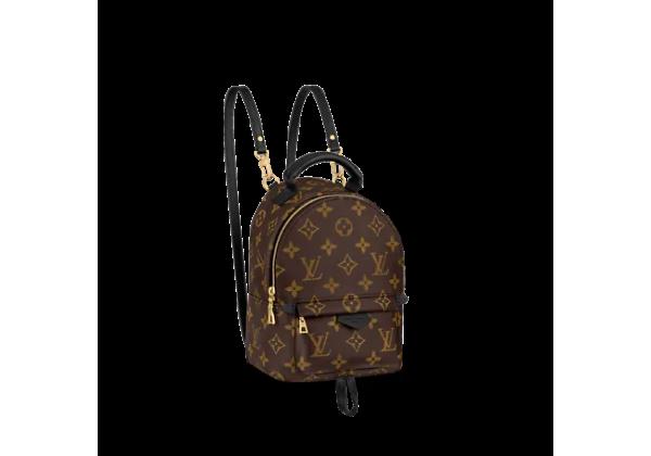 Рюкзак Louis Vuitton Palm Springs mini коричневая